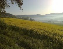 Blick auf das Weserbergland.