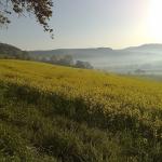 Natur im Weserbergland